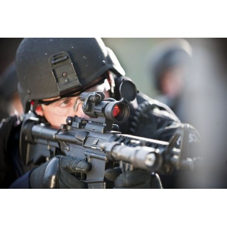 Lunette AimPoint Patrol Rifle Optic (PRO)