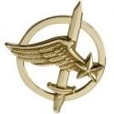 Insigne béret Commando de l'Air