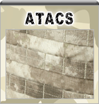 Camouflage ATACS